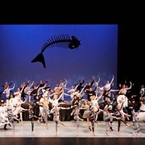 Ondersteuning dansopleiding